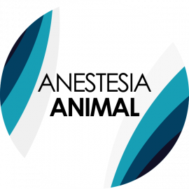 gallery/anestesia_animal_circulo